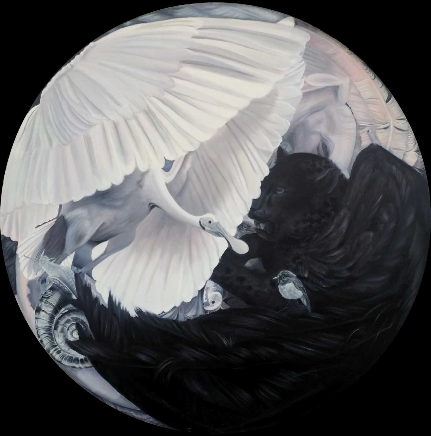 """2.Title: untitled (round)<br></br>Dimensions: 38"""" x 38""""<br></br>Medium: oil paint on canvas"""