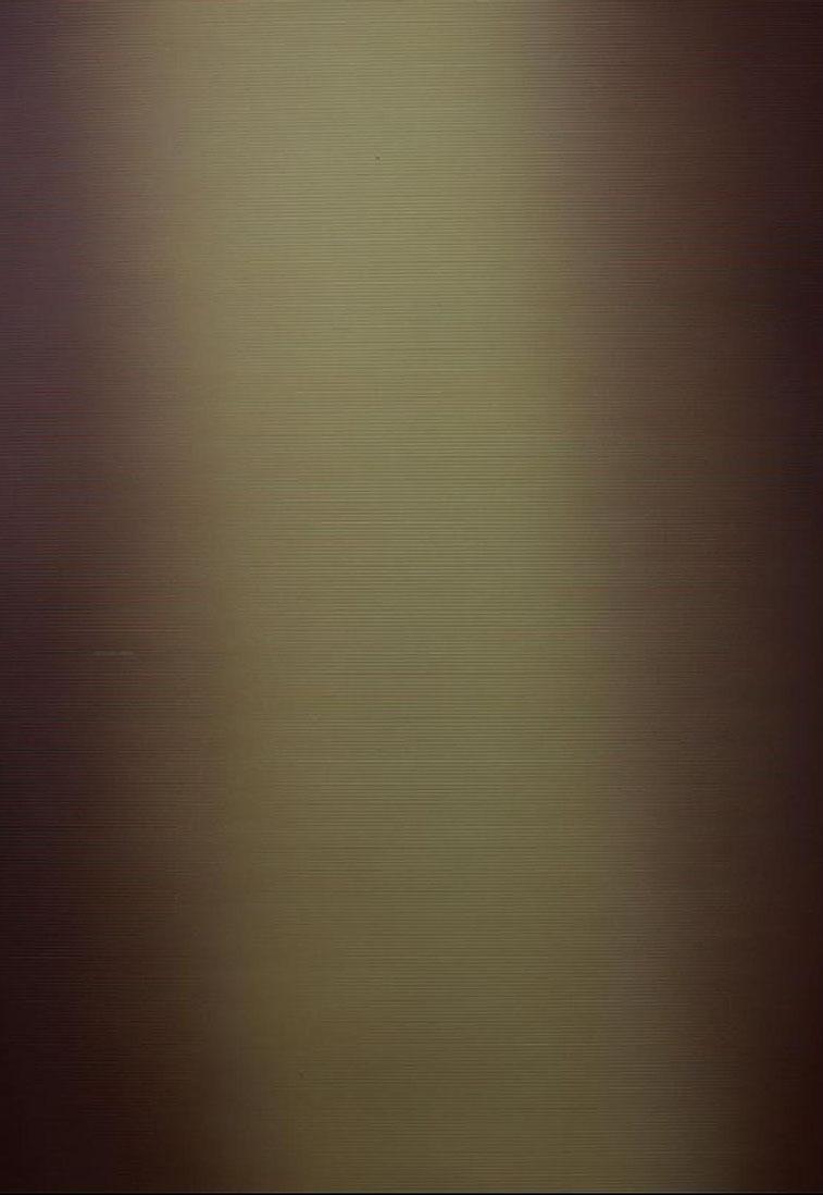 "FAWAD JAFRI<br></br>Undisturbed<br></br>84""X57""<br></br>oil on canvas"